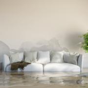 Vorträge und Gruppe: Pflege daheim – Überforderung vermeiden